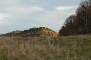 Taras widokowy na Pańskiej Górze - widok w kierunku E
