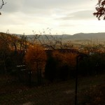Panorama Beskidu Małego