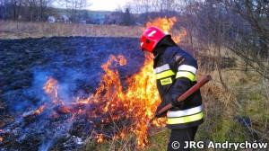 Pożar nieużytków i szuwarów obok osiedla Lenartowicza w Andrychowie - była cegielnia